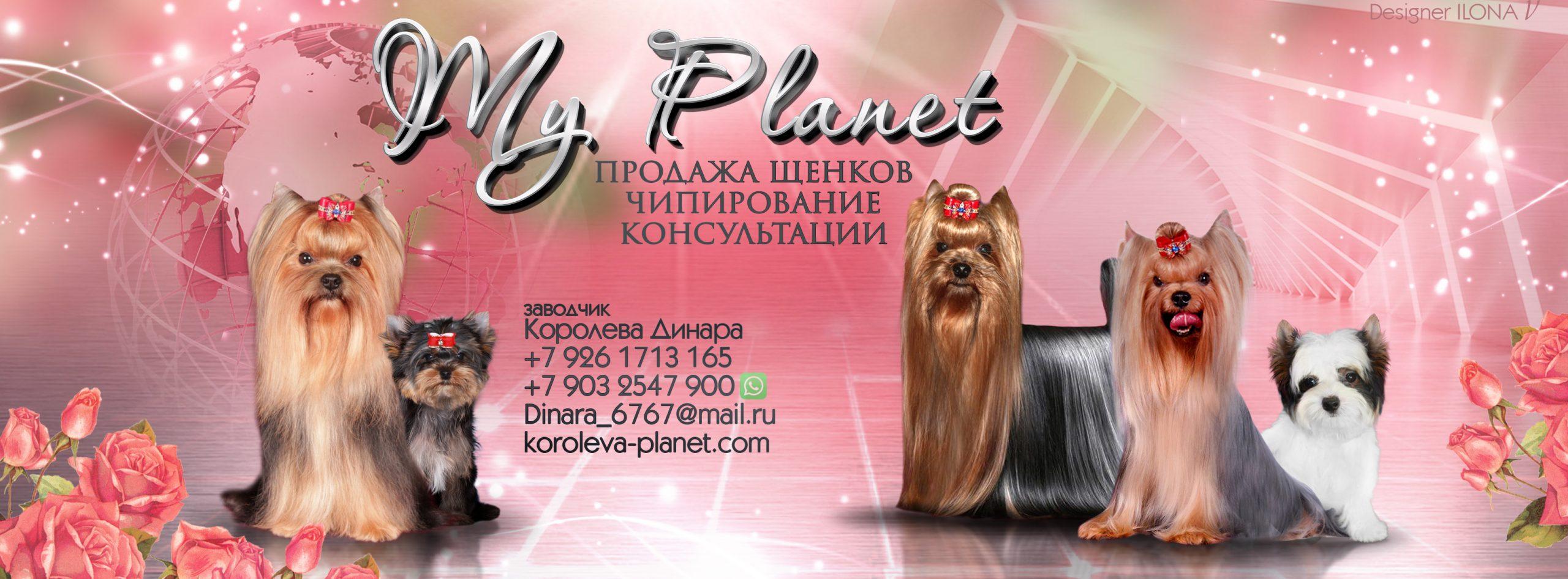 Питомник My Planet